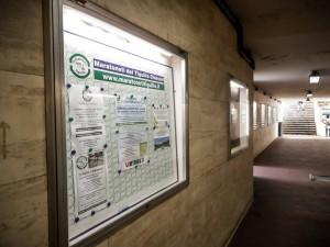 vetrinette sottopasso stazione ferrovaria Promotur Chiavari